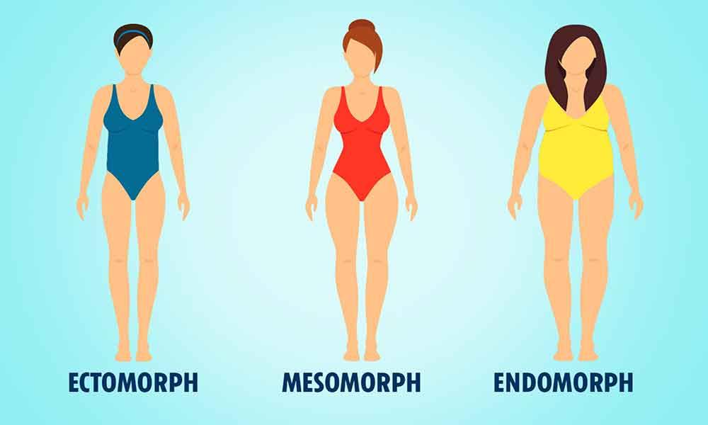 عوامل موثر در چاقی و افزایش وزن شکل 1